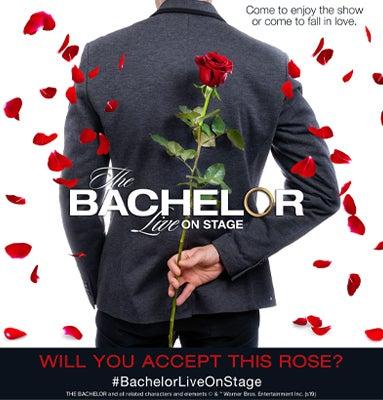 Bachelor web Thumbnail.jpg