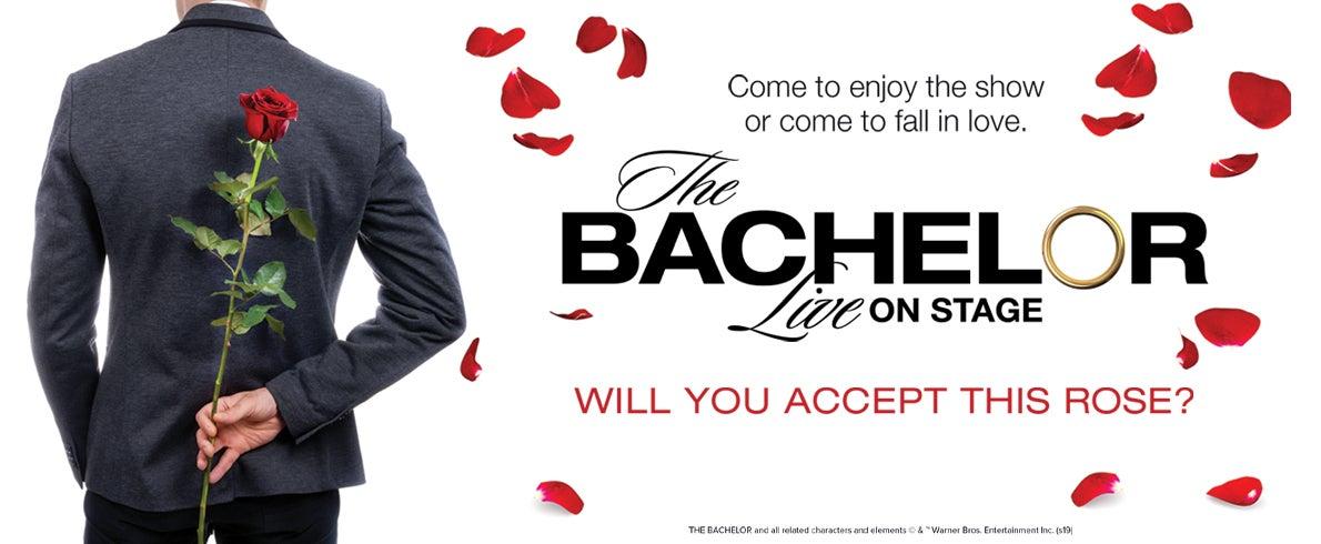 Bachelor web spotlight updated.jpg